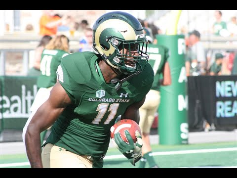 Miami Dolphins Undrafted Free Agent Acquistions | Have The Dolphins Found Elite Talent