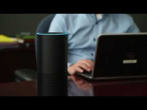Nuance Demonstration of Nina for Amazon® Alexa™