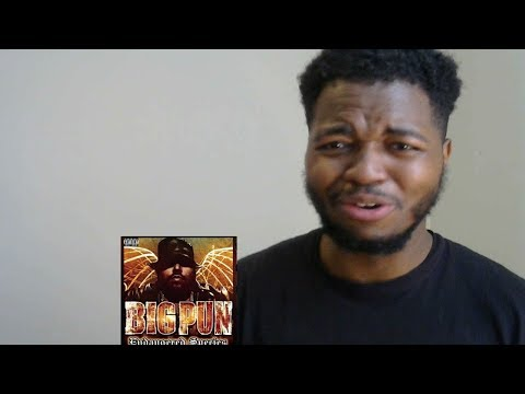 Brave In The Heart Big Pun feat. Terror Squad Reaction