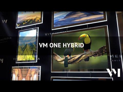 VM One Hybrid (EN)