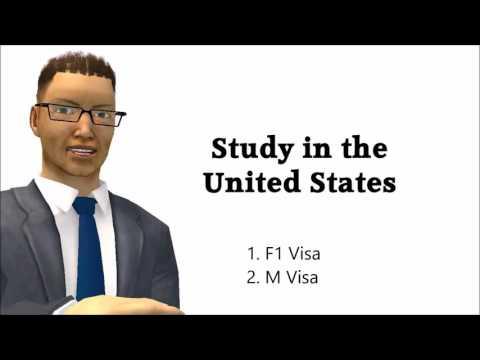 Immigration Law Help on Common Visas to Immigrate to the USA