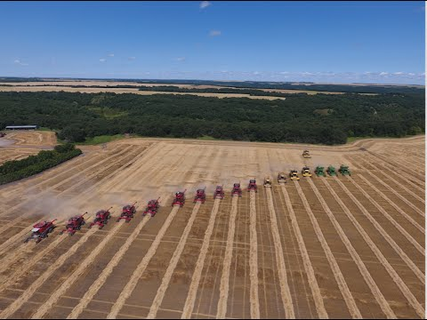 Canadian Foodgrains Bank Winter Wheat Harvest 2016- 18 Combines -Killarney, Manitoba