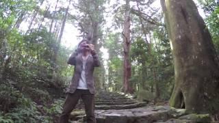 【オカリナ】風のとおり道/久石 譲 On Ocarina