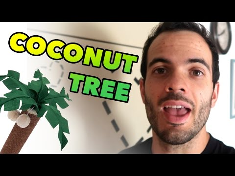BUILDING A COCONUT TREE - SPANISH BLOGGER DAILY LIFESTYLE #63
