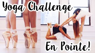 Extreme Yoga Challenge in Poin…