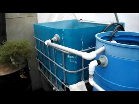 Cleaning my IBC tote for Aquaponics