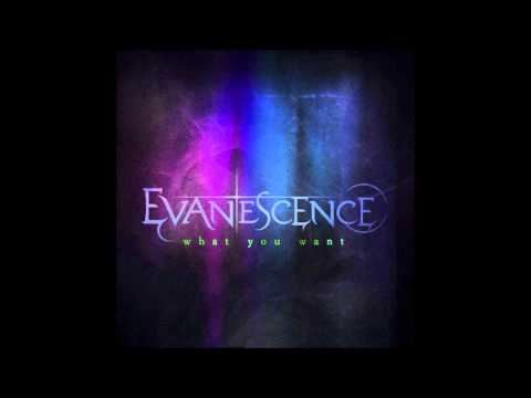 Evanescence - What You Want (HQ)