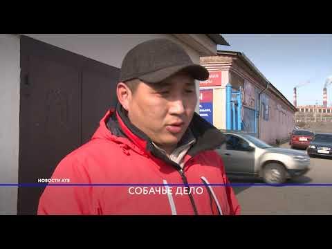 Улан-удэнцы продолжают жаловаться на ООО «ЦАСС»