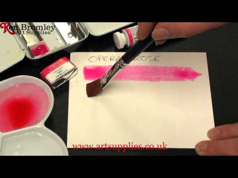 Winsor & Newton Artists' Water Colour paint Opera Rose 448 Series 2