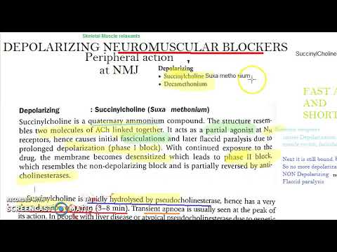 Pharmacology 346 A SuccinylCholine Skeletal Muscle Relaxant Chemistry
