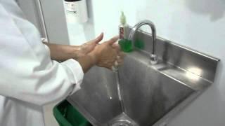 Pasos para el correcto lavado de las manos
