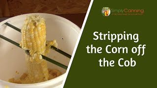 Cutting the corn off the cob for canning and dehydrating.