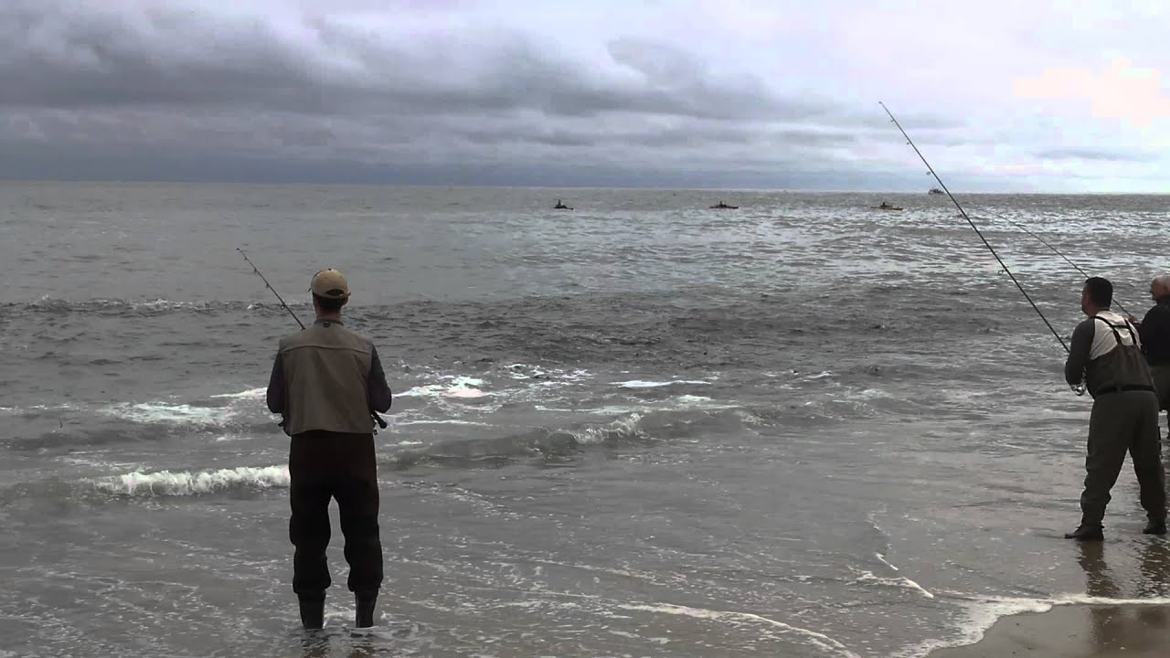 Montauk striper blitz september 2012 surf fishing youtube for Surf fishing for stripers