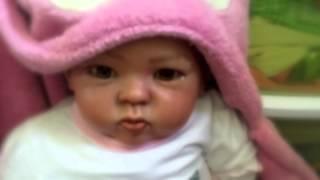 Potty Training a Reborn Toddler!