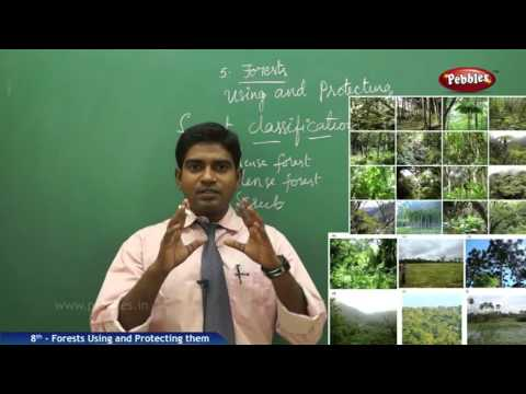 Forests Using and Protecting them | 8th Social Studies | AP & TS State Board Syllabus | Live Video