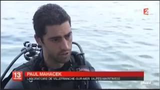 Recherche environnementale : eFoce sur France 2