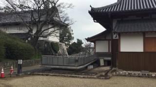 2박3일 일본 큐슈 사가여행