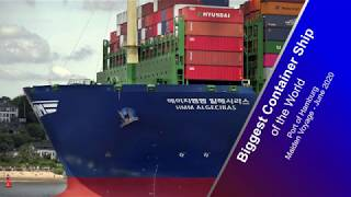 HMM ALGECIRAS | Biggest Container Ship of the World | Port of Hamburg | June 2020