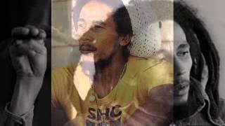 Bob Marley - No Woman No Cry - Natty Dread (1975)