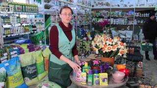 видео В помощь начинающим садоводам. Вьющиеся растения