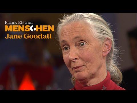 Was unterscheidet uns von Schimpansen? - Jane Goodall   Frank Elstner Menschen