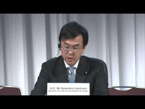 IPCC AR5 WGII Opening Session (Floor), Yokohama, Japan - 25 March 2014