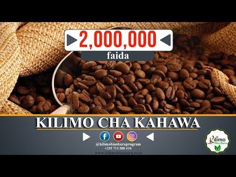 KILIMO CHA KAHAWA