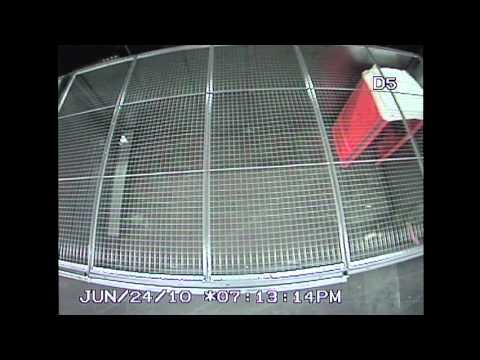 Police CCTV Footage of G20 Detention Center for the public record Part 1/6