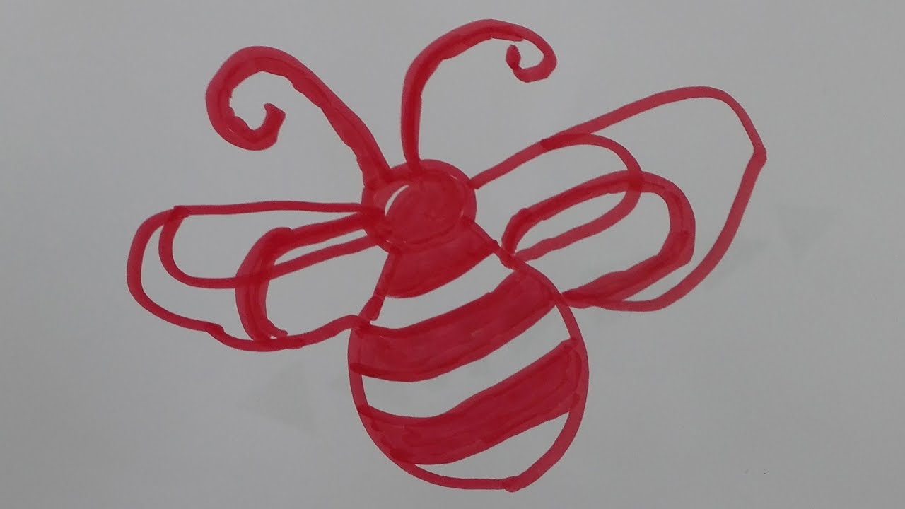 how to draw a bee draw a honey bee step by step draw a realistic bee