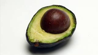 how to grow an avocado tree from seed easy way