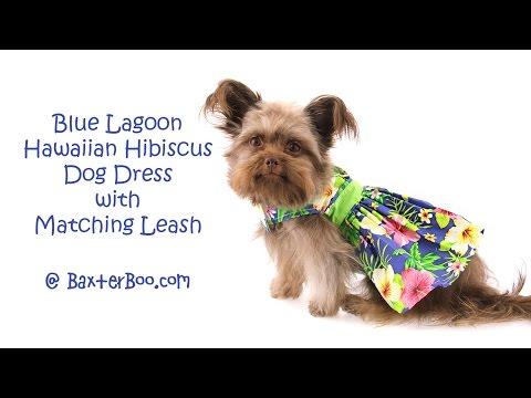 Blue Lagoon Hawaiian Hibiscus Dog Dress with Matching Leash
