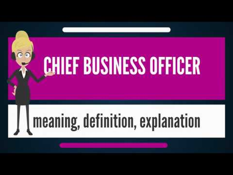 What is CHIEF BUSINESS OFFICER? What does CHIEF BUSINESS OFFICER mean?