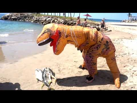 T-Rex On The Beach
