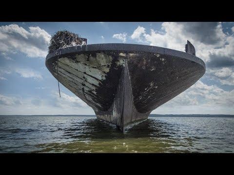 Kayaking the Mallows Bay Ghost Fleet (Ship Graveyard)