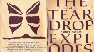 The Teardrop Explodes - Passionate Friend