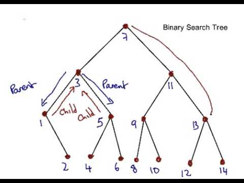 Graph theory terminology for trees youtube graph theory terminology for trees ccuart Images