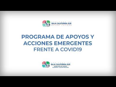 Programa de apoyos y acciones emergente frente a COVID19