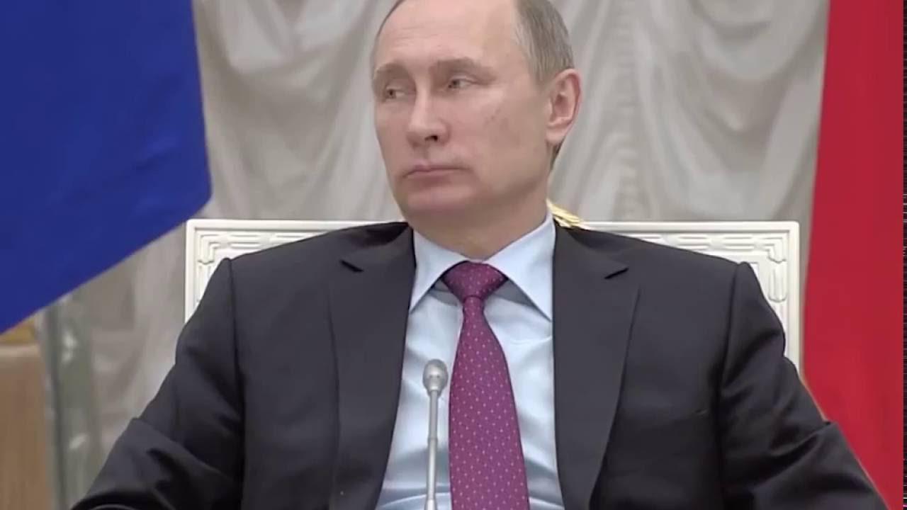 Медведев покемон полное видео