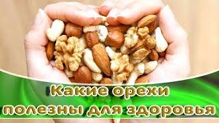 ➤ Какие орехи полезны для здоровья ➤