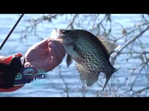 Crappie Fishing The St. Johns River - Russ Bailey And Matthew Outlaw