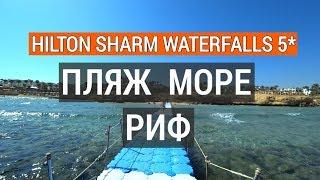 Шарм Эль Шейх пляж Hilton Sharm Waterfalls Resort 5 обзор отеля Хилтон в Египте Красное море