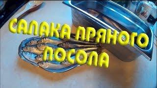 Салака пряного посола(Салака пряного посола - вкусный и легкий рецепт. Пряный посол позволяет раскрыть весь вкус рыбы, оттенив..., 2015-08-01T15:24:38.000Z)