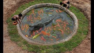 Build Most Beautiful Fish Pool  Shape Crocodile By Ancient Skill In Deep Jungle