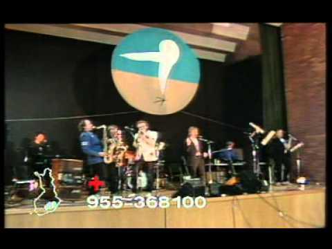 Lapinlahden Linnut - Pikkumiesten laulu (live)