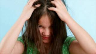 Difference Between Lice and Dandruff