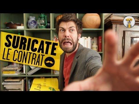 SURICATE – Le contrat