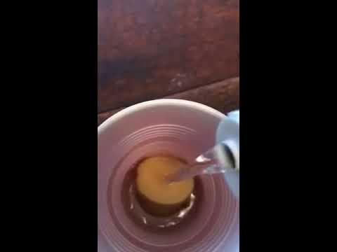 potato in hydrogen peroxide experiment