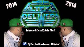 CUMBIA MORE 2014 - DJ PUCHO MASTERMIX
