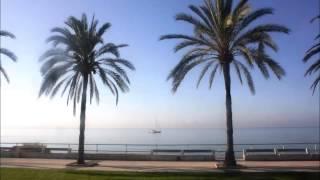 wombavoice - summertime sadness (original von lana del rey)