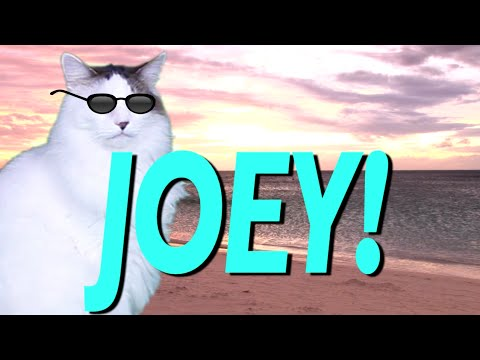 HAPPY BIRTHDAY JOEY! - EPIC CAT Happy Birthday Song